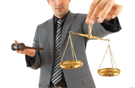 На фото: Субъекты гражданского права