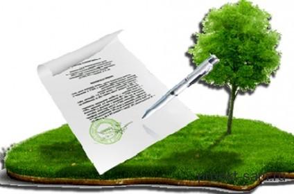 На фото: Оформление земельного участка в собственность